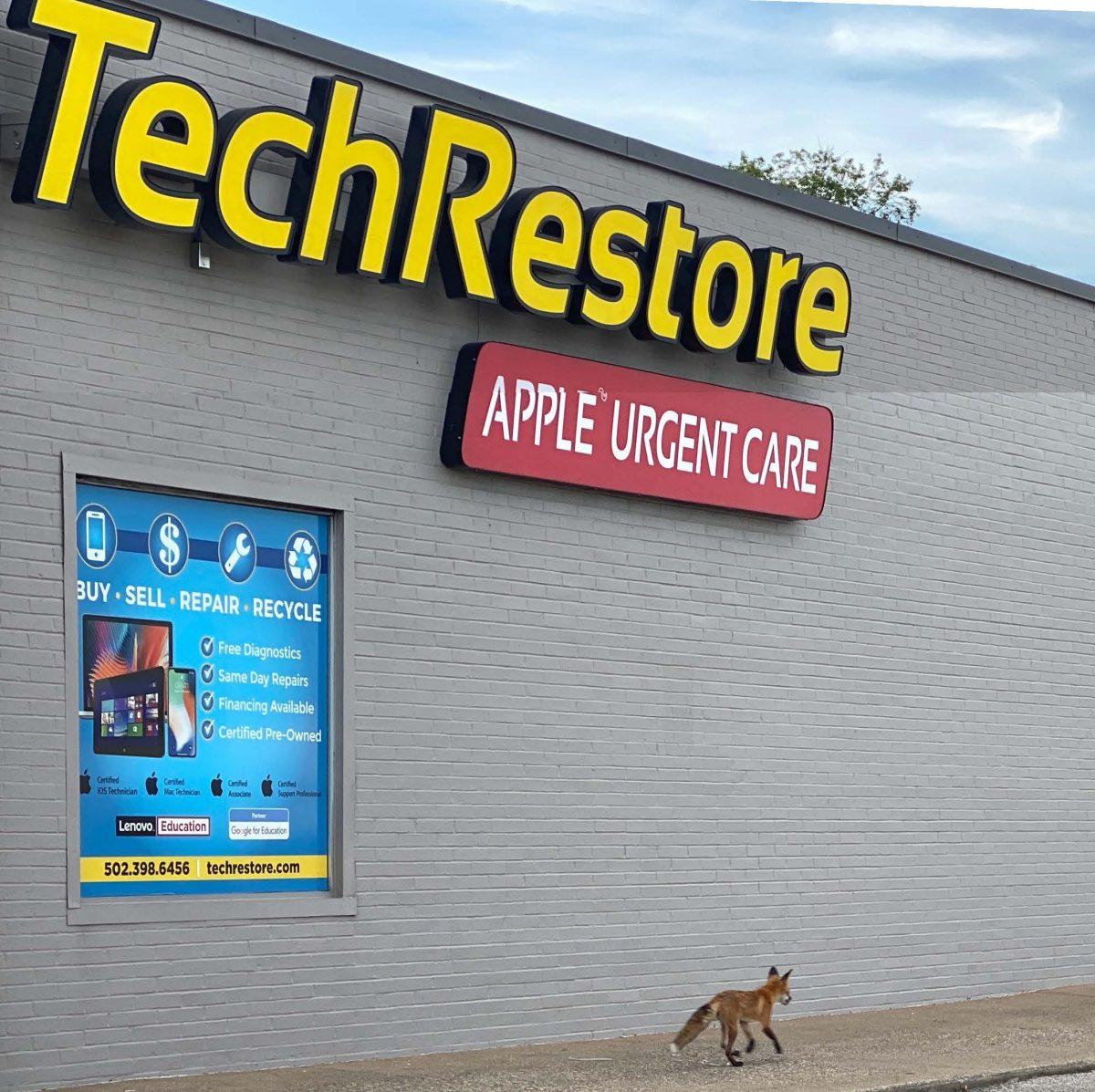 Get Some Summertime, TechRestore